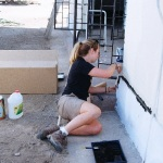 Volunteer painting vet clinic